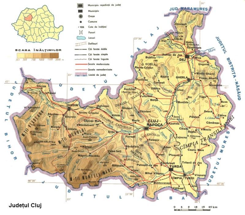 harta turda