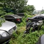Masini de lux abandonate intr-un parc auto GALERIE FOTO